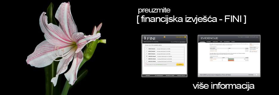 FINI – Financijska izvješća